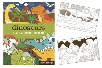 Livre Coloriage Dinosaure.Livre De Coloriage Dinosaures Dam Webshop